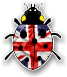 Ladybird Bug Design With UK Union Jack British Flag Motif External Vinyl Car Sticker 90x105mm